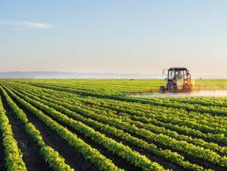 agricoltura camera commercio