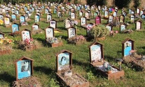 mozione cimitero animali