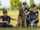 guardie zoofile albizzate