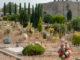 cimitero busto erbacce