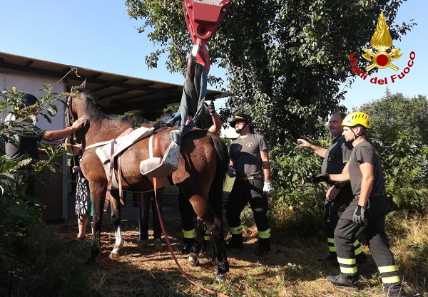 solbiate cavallo buca