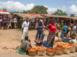 Polpette Malawi