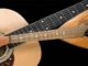 concerto mandolino busto