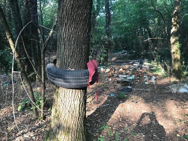 boschi discariche altomilanese