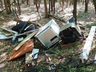 rifiuti boschi malpensa