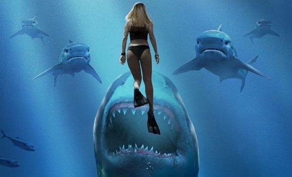 squalo visto rivisto