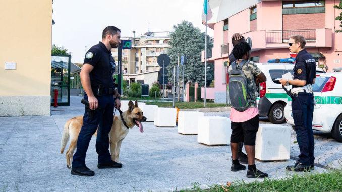 cani-sicurezza-castano