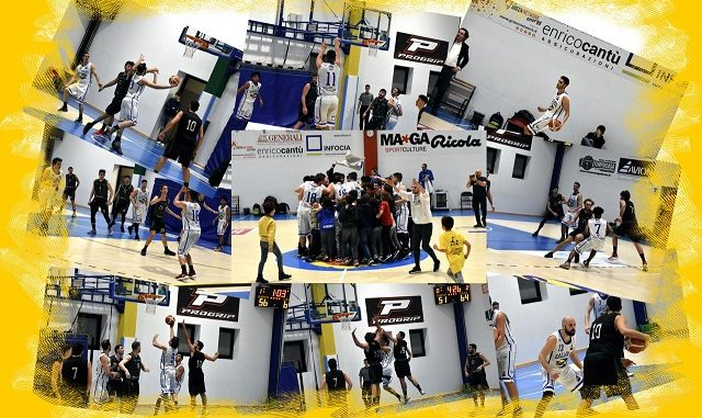 gallarate basket nerviano