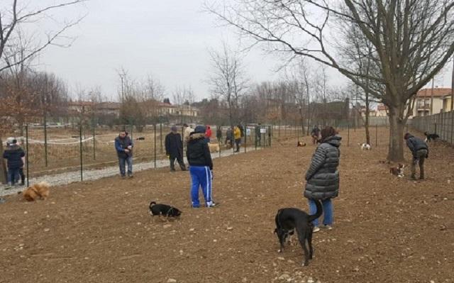 area cani samarate
