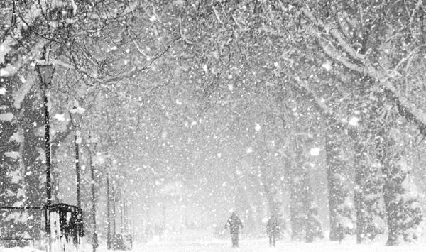neve pioggia tempo