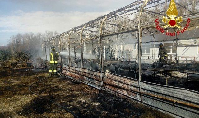 sesto incendio serra