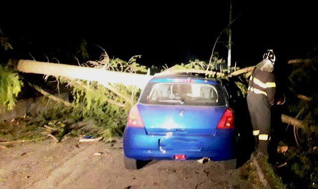 provincia varese danni vento