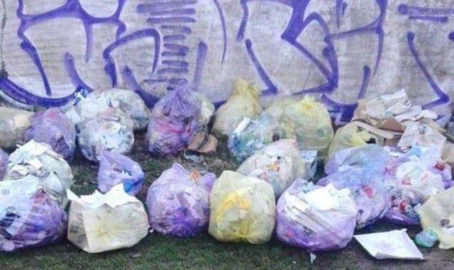 gallarate cardano rifiuti cassani