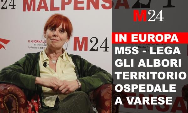 Intervista paola macchi m5s