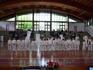 busto kung fu bambini