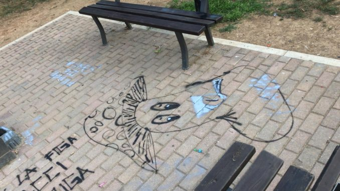 castano parco junior vandali