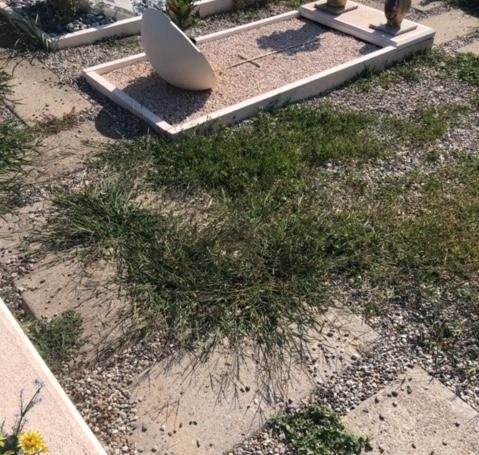 busto cimitero degrado
