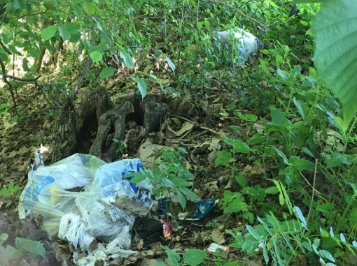 furbetto rifiuti bosco cardano