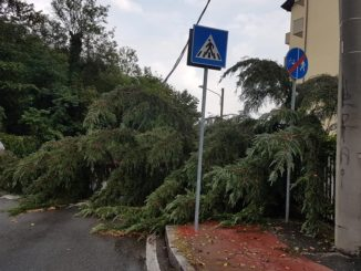gallarate maltempo case inagibili