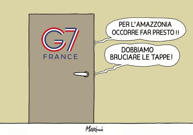 g7 amazzonia marini