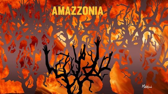 amazzonia marini