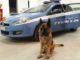 busto cani salvati polizia