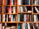 cerro maggiore biblioteca libri