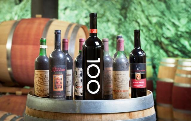cantina moncucchetto vino ticinese
