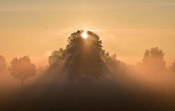 sole temperatura foschia nebbia