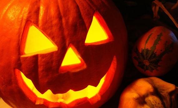brunio zucche halloween festa