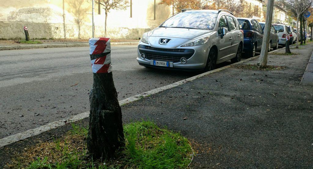 viali busto alberi caprera