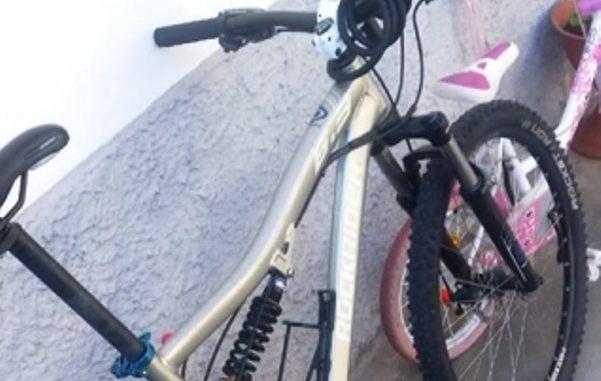 legnano furto bici online