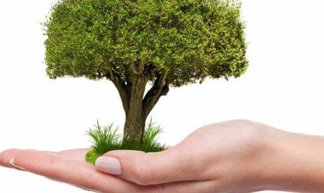 varese giornata nazionale alberi