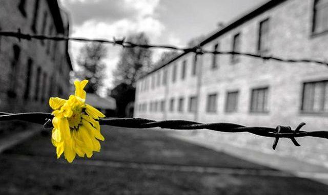 varese giornata memoria olocausto
