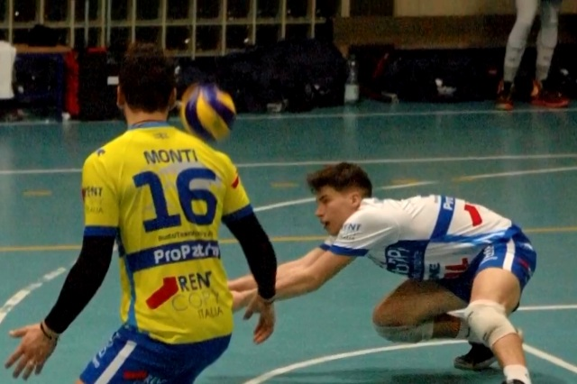 volley tigrotti