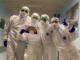 ospedale busto donazioni coronavirus