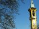 cerromaggiore premio letterario campanile