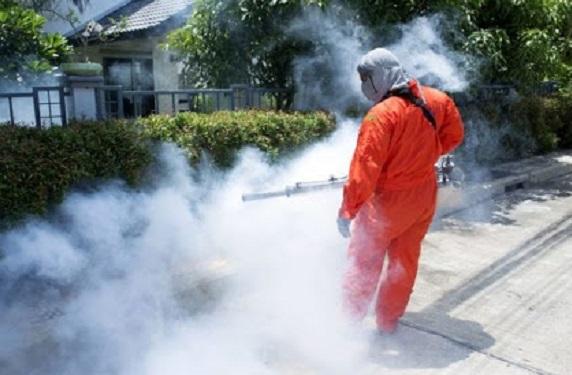cerromaggiore zanzare disinfestazione tarloasiatico
