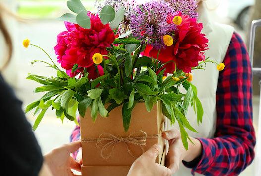 busto fiore piante domicilio