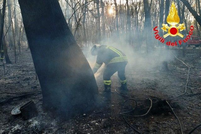marnate incendio boschivo