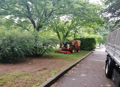 legnano manutenzione verde parchi amga