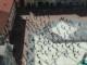 busto piazza santa maria flash mob