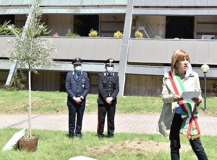 castellanza cimitero ulivo commemorazione
