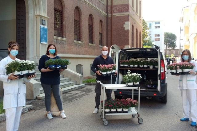 fiori infermieri busto