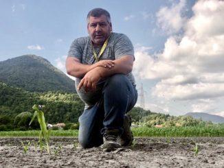 Marcello Gasperini campo cinghiali