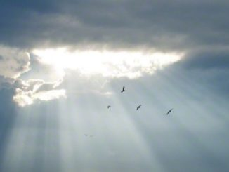 temporali sole tregua afa