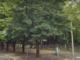 gallarate arrestato parco via milano