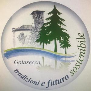elezioni 2020 golasecca candidati