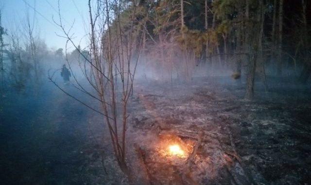 somma incendio bosco vigano