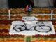 rescaldina trofeo casati ciclismo